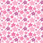 Cuteness_-_Square_bbe9e37a-207a-42c7-9c57-998560f4dc58_1024x1024