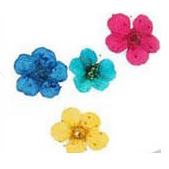 fleurs-tray